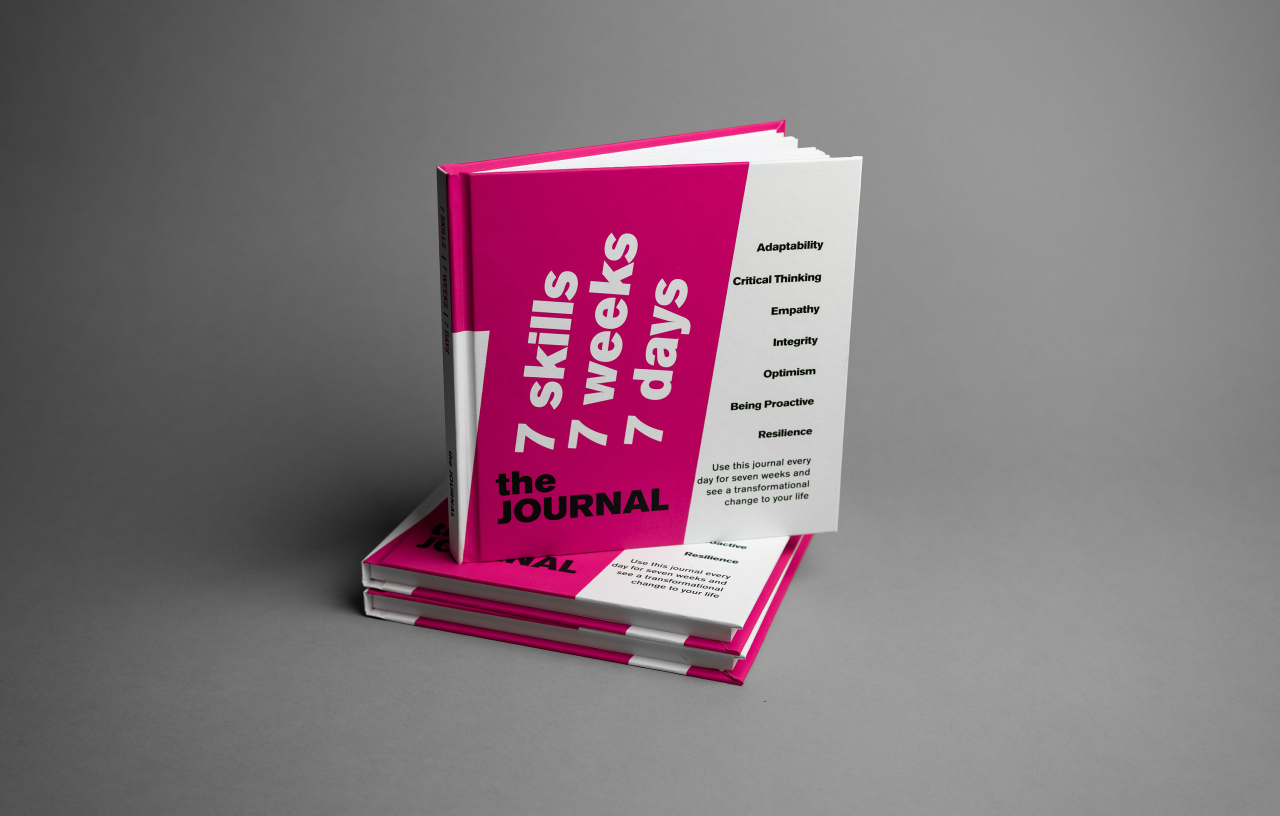 journal 7 skills for the future